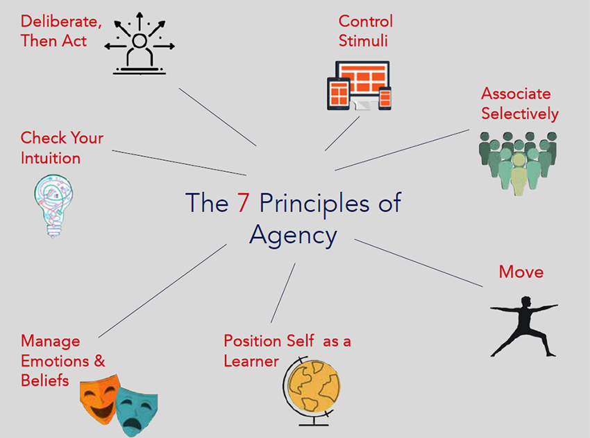 The 7 Principles of Agency chart