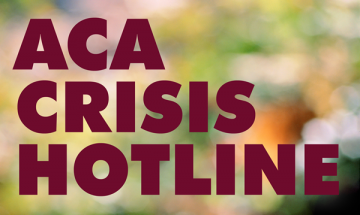 How The Camp Crisis Hotline Can Help You American Camp Association