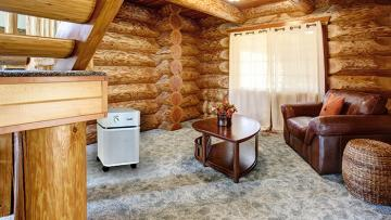 air purifier in a large cabin room