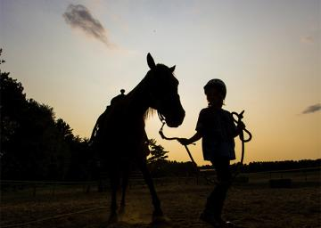 Silhouette of a camper and horse at sunset