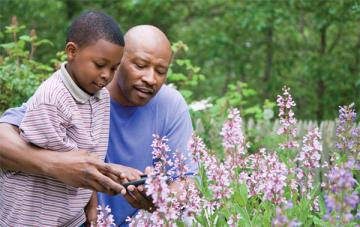 Father gardening with son