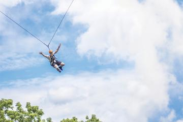 Staff on a zip line