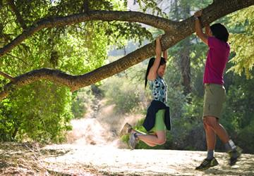 Young adults hanging from a tree